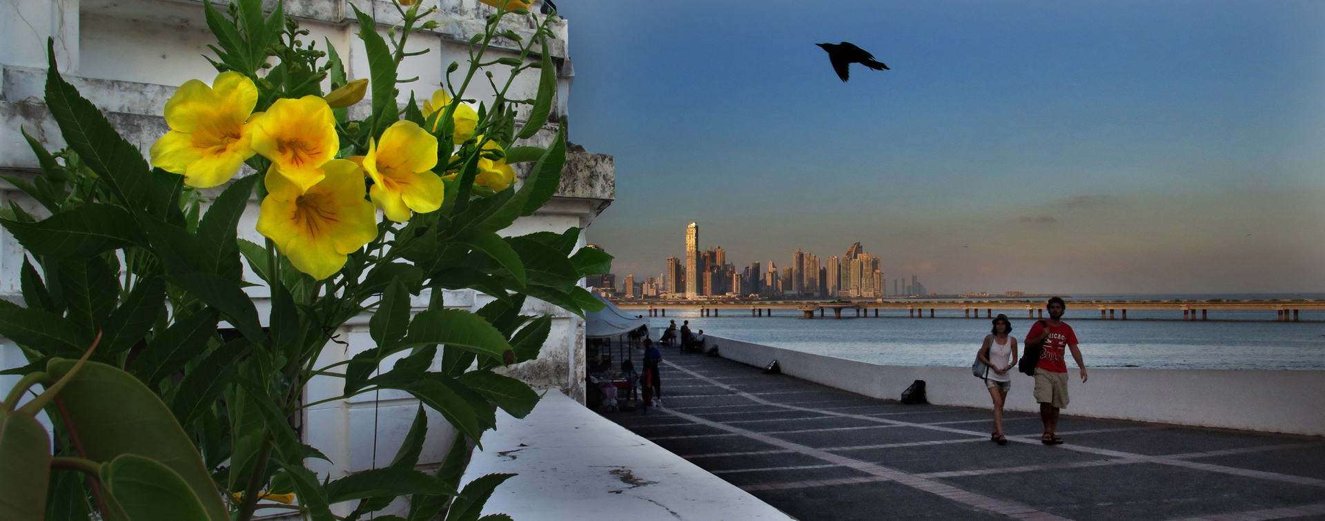 Panama 2016, copyright RodneyCurtis.com 0004